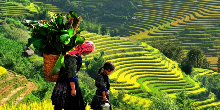 Sapa Adventure Treks in 7 Days